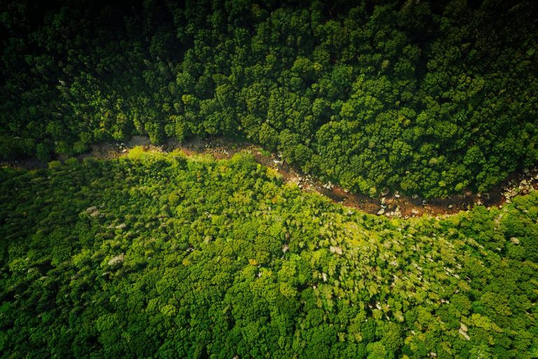 Craddock Murray Neumann Environmental Responsibility